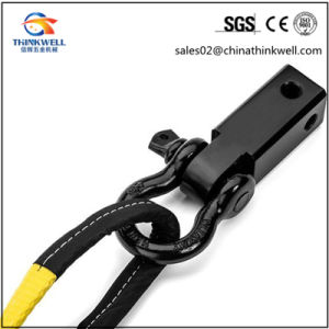 Color Painted Polyester Tow Strap with Hooks pictures & photos