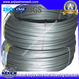 Electro Galvanized Iron Steel Wire for Construction pictures & photos