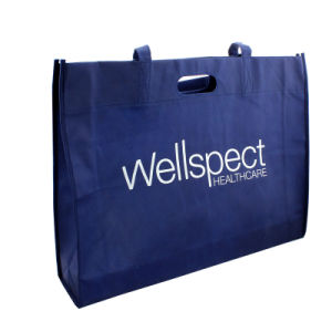 BSCI Promotional PP Non Woven Shopping Bag pictures & photos
