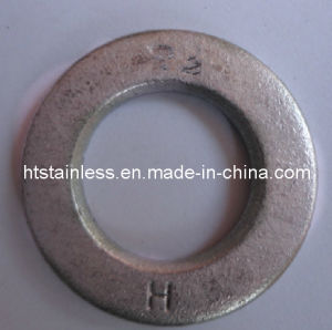 En14399-6 Mechanical Galvanzed Structral Washer pictures & photos