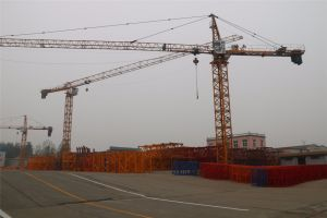 Lifting Equipment Crane Made in China 8t Qtz5613 pictures & photos