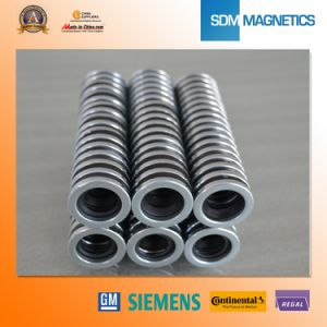 Ts16949 Permanent Neodymium Ring Magnet pictures & photos