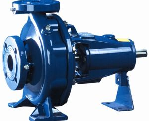 Horizontal Electrical Single Stage Single Suction Pump with CE Certificates pictures & photos
