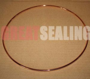 Metal Hollow O Seal Ring for High Temperature and Pressure Use