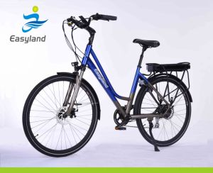 700c Brushless E-Bicycle with SANYO Lithium Battery pictures & photos