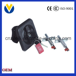 China Auto Parts Outside Swing Door Lock pictures & photos