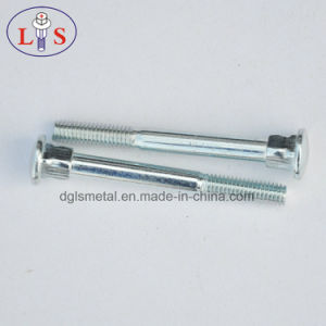 Stainless Steel Carriage Bolt for Half Thread pictures & photos