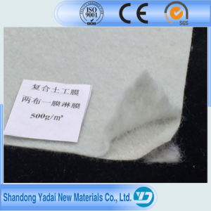 Waterproof HDPE Geomembrane Geotextile a Cloth a Film for Hydraulic Engineering pictures & photos