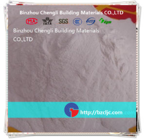 Powder Types Concrete Admixture Cl-PCE-98/Cl-Wrp-99/Cl-Srp-99 Powder pictures & photos