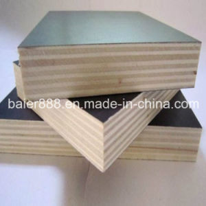 Black Film Face Plywood Form Linyi China pictures & photos