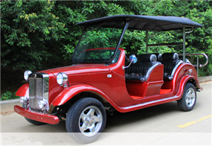 6 Seats Electric Car (LDG-LY6C02) pictures & photos