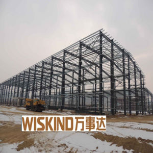 Newest Large Span Steel Structure (WSDSS301) pictures & photos