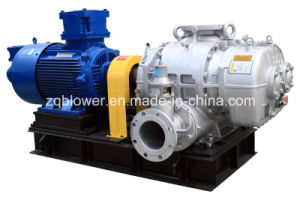 Special Gas/Chemical Gas/Natural Gas Roots Blower (RRE-150) pictures & photos