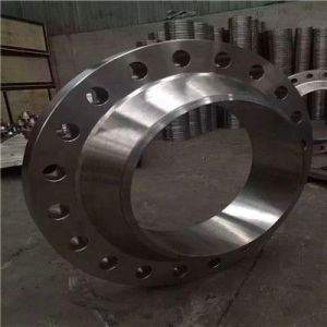 Largest Forged Wind Power Flange Made in China pictures & photos