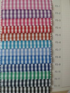4 mm Checks Twill Shirting Fabric pictures & photos