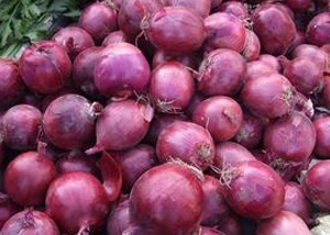 Supply The Fresh Red Onion with Lowest Price in Good Quality pictures & photos