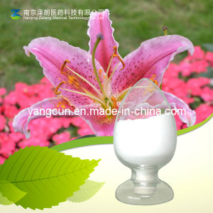 Lilium Brownii Polysaccharide (Lily-polysaccharide) 50%~95% pictures & photos