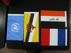 Promotion Hand Flag/Hand Waving Flag Banner pictures & photos
