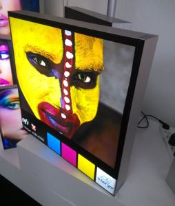LED Light Box for Advertising Indoor or Outdoor pictures & photos