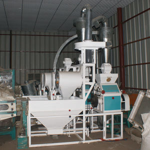 Flour Mill Machine for Maize/Wheat (6FTS-13A) pictures & photos