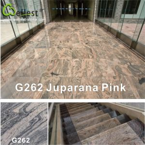 G262 Juparana Granite Paving Stone for Tile/Step/Tread/Riser/Landing/Coping pictures & photos