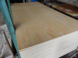 High Quality Full Birch Plywood Price pictures & photos