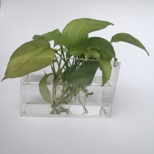 Custom Clear Acrylic Rectangular Vase with Photo Frame pictures & photos