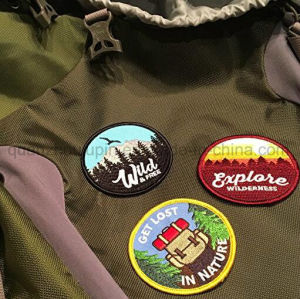 Custom Various Clothes Bag Heat Transfer Embroidery Patch pictures & photos