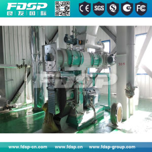 Large Capacity Animal/Poultry/Livestock Feed Production Line pictures & photos