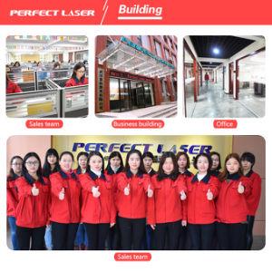 Pel-600 CNC Channel Letter CNC Bending Machine pictures & photos