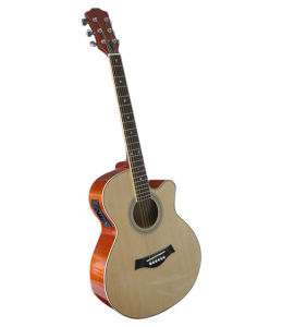 Acoustic Guiatr (GM201CE)