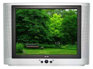 """29"""" Normal Flat / Pure Flat CRT Color TV (29T8)"""
