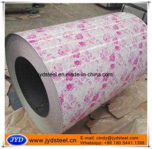 Printed PPGI/Design PPGI for Decorate Materials pictures & photos