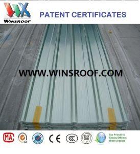 Wins Fiberglass Roof pictures & photos