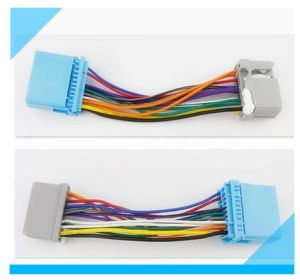 Custom Audio Wire Harness pictures & photos