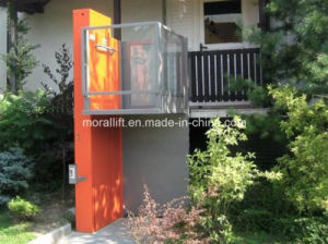 Stainless Steel Disabled Home Lift (VWL) pictures & photos
