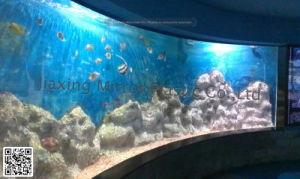 Acrylic Aquarium Mr007 pictures & photos