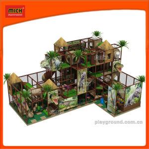 Children Dinosaur Indoor Playground for Entertainment Center pictures & photos