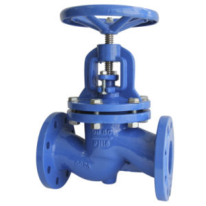 DIN Standard Cast Iron Globe Valve pictures & photos