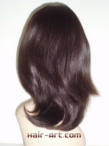 "100% Virgin European Hair Sheitels Kosher Wigs - 14"" pictures & photos"