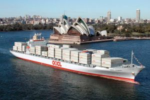 Mature Experience Consolidator in Oocl Shipping From China to Dubai pictures & photos