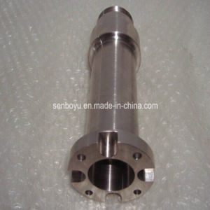 CNC Machining Shaft with Competitive Price (P160)