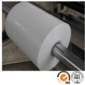 Wholesale BOPP Film Coex One / Two Sides Heat Sealable BOPP Film pictures & photos