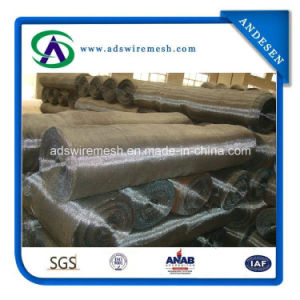 14-18 Mesh Galvanized Insect Screen for Preventing Insect and Mosquito pictures & photos