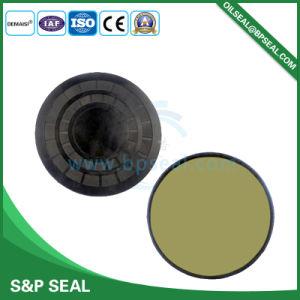 Superior Quality Ec Oil Seal pictures & photos