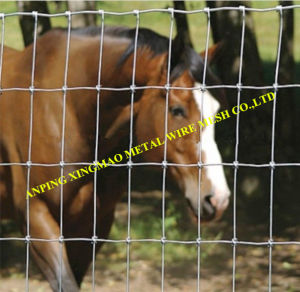 Hot-Dipped Galvanized Goat and Cattle Fence/Animal Fence (XMS04) pictures & photos