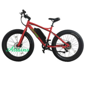 Big Tyre Electric Bicycle for Mountain Trip pictures & photos