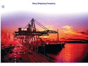 Consolidate Ocean Shipping/Sea Transportation/Seafreight for North America pictures & photos
