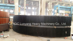 Large Cement Gear with Kinds of Material pictures & photos