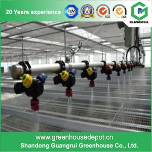 Hydroponic Growing Systems Greenhouse for Home Used pictures & photos
